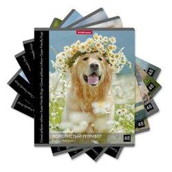 Тетрадь общая ученическая ErichKrause® 48 листов в клетку. Самые добрые собаки, 49638