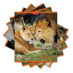Тетрадь общая ErichKrause® 96 листов в клетку. It's Love, 49657