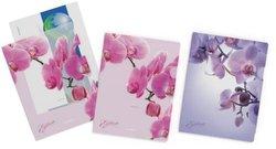 Папка-уголок пластиковая  ErichKrause® Romantique, A4, ассорти (комплект 4 шт) 33620