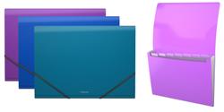 Папка-картотека пластиковая  ErichKrause® Glance Vivid, с 6 отделениями, A4, ассорти 43117