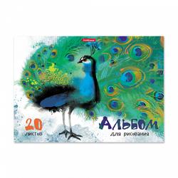 Альбом для рисования А4 20 листов. ErichKrause, клеевое скрепление. 43261