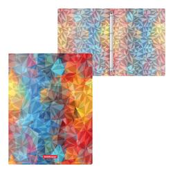 Папка на 4 кольцах пластиковая  ErichKrause® Dynamique, 24мм, A4 45381, 47161