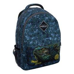 Ученический рюкзак ErichKrause® EasyLine® с двумя отделениями 20L Iguana 48608