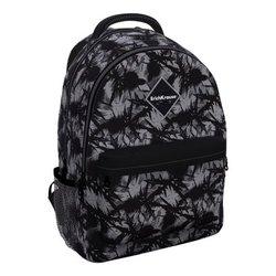 Ученический рюкзак ErichKrause® EasyLine® с двумя отделениями 20L Thistle 48609