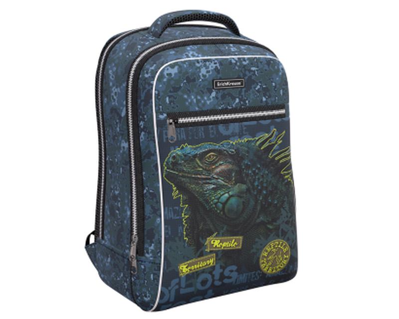 Ученический рюкзак ErichKrause® ErgoLine® Urban 18L Iguana 48673