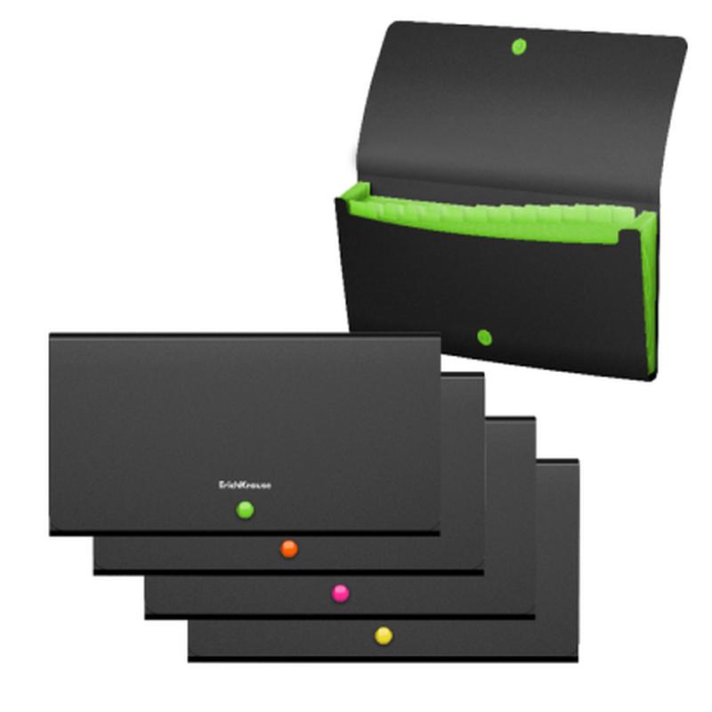 Папка-картотека пластиковая  ErichKrause® Matt Accent, с 12 отделениями, Check size, ассорти 50426