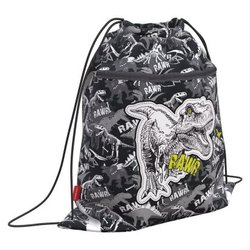 Мешок для обуви ErichKrause® с карманом на молнии 500х410мм Dinosaur Park 52133